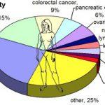 meme kanseri istatistikleri 400x199 1