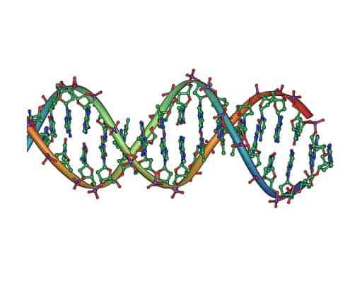 Geniş Moleküler Profilleme Testleri